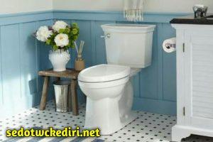 Cara Merawat Toilet Agar tetap Bersih